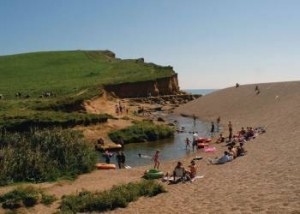 Freshwater Beach Holiday Park In Dorset Holiday365